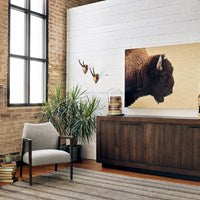 American Bison - Maple Box Art Print Wall Hanging