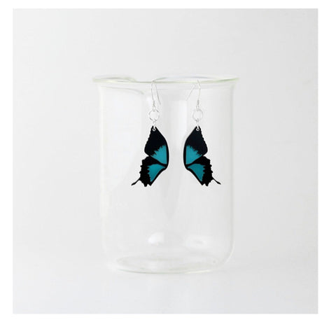 Earrings - Ulysses Butterfly