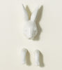 jumping-rabbit-wall-mounted-jewelry-holder-ideas