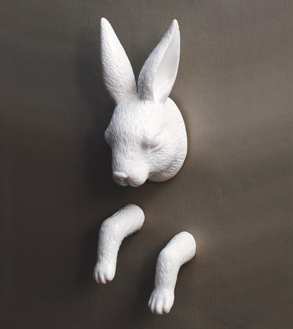 Show Jumping Rabbit Wall Hook