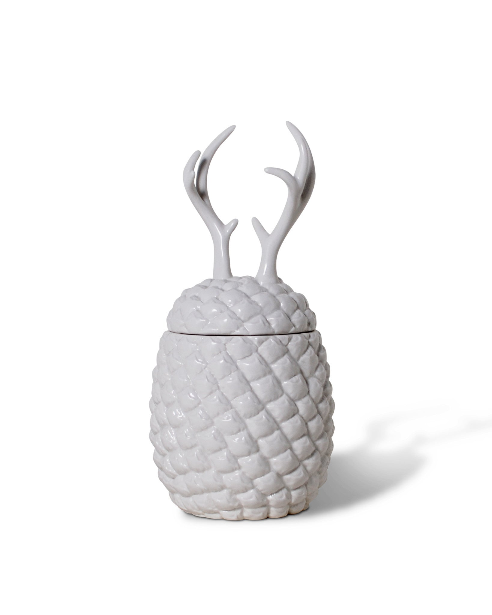 pineapple antler ceramic kitchen canisters hottt com pineapple antler container pineapple antler container pineapple antler ceramic kitchen canisters