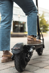 EcoReco Foldable Electric Scooter- L5+