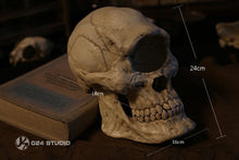 Load image into Gallery viewer, (Preorder) 024 Studio Giant Skull