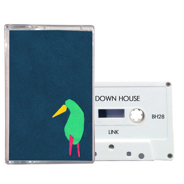 "The Down House ""Link"""
