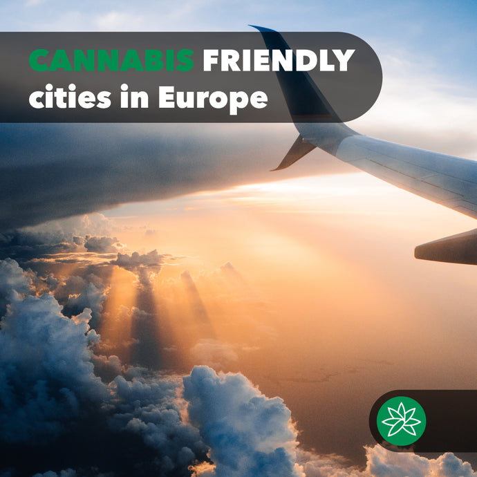 Cannabis friendly cities in Europe.