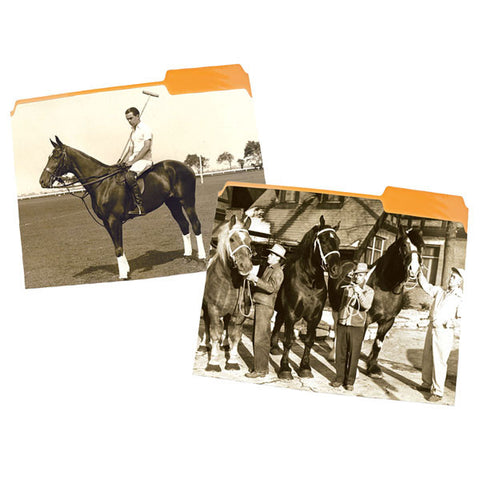 Equestrian Themed File Folders by Seven Barks