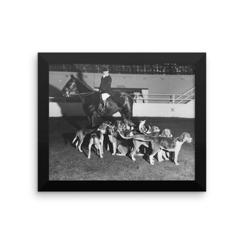Showing hounds - Framed - 8x10