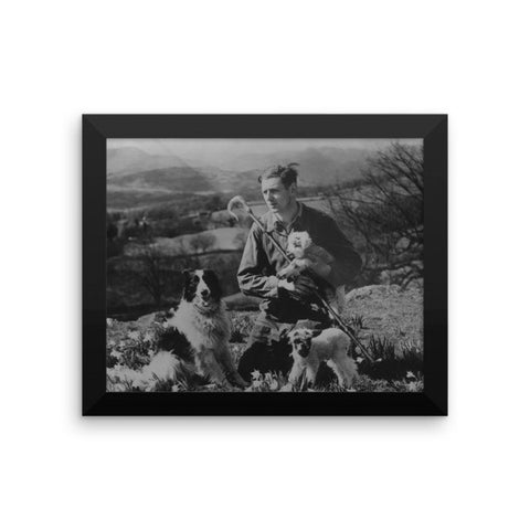 Lakeland shepherd - Framed - 8x10