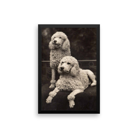 Posing puppies - Framed - 12x18