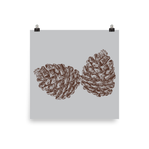 Archival Ink 12 x 12 photo paper poster - Pine Cones