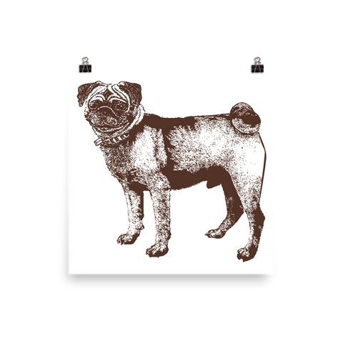 Archival Ink 12 x 12 photo paper poster - Pug