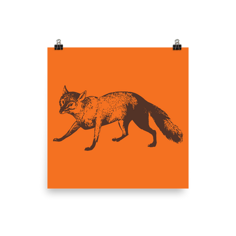 Archival Ink 12 x 12 photo paper poster - Fox