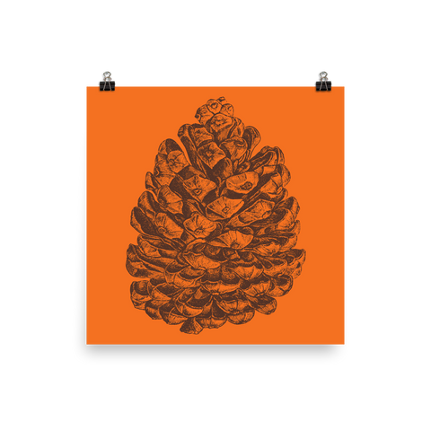 Archival Ink 12 x 12 photo paper poster - Pine Cone