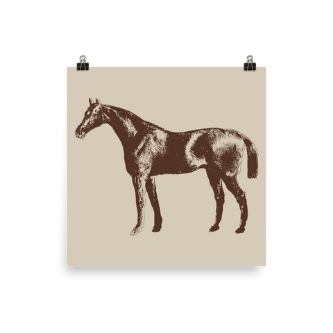 Archival Ink 12 x 12 photo paper poster - Horse