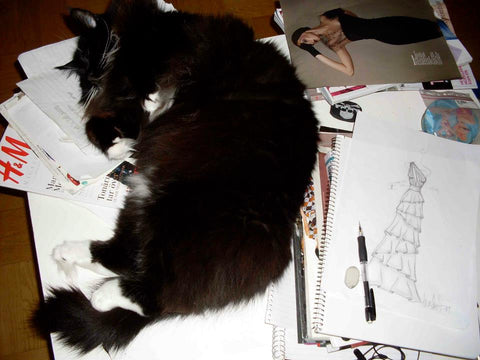large black fluffy cat sleeping on fashion drawings