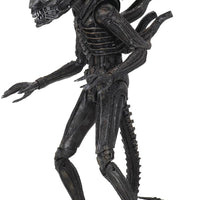 Aliens 40th Anniversary 7 Inch Action Figure Ultimate Series - Big Chap