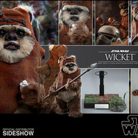 Star Wars Return of the Jedi 6 Inch Action Figure 1/6 Scale Series - Wicket Hot Toys 904975