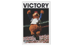 Victory Journal Issue 10