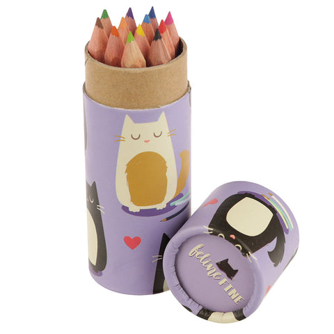 Fun Cat Colouring Pencils Tube - Hello Chestnut