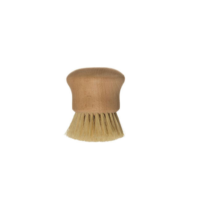 Beech Wood Brush - Bungalow 56