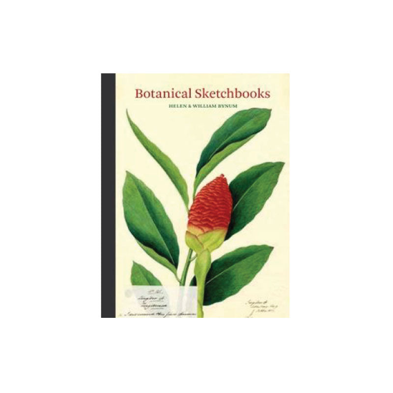 Botanical Sketchbooks - Bungalow 56