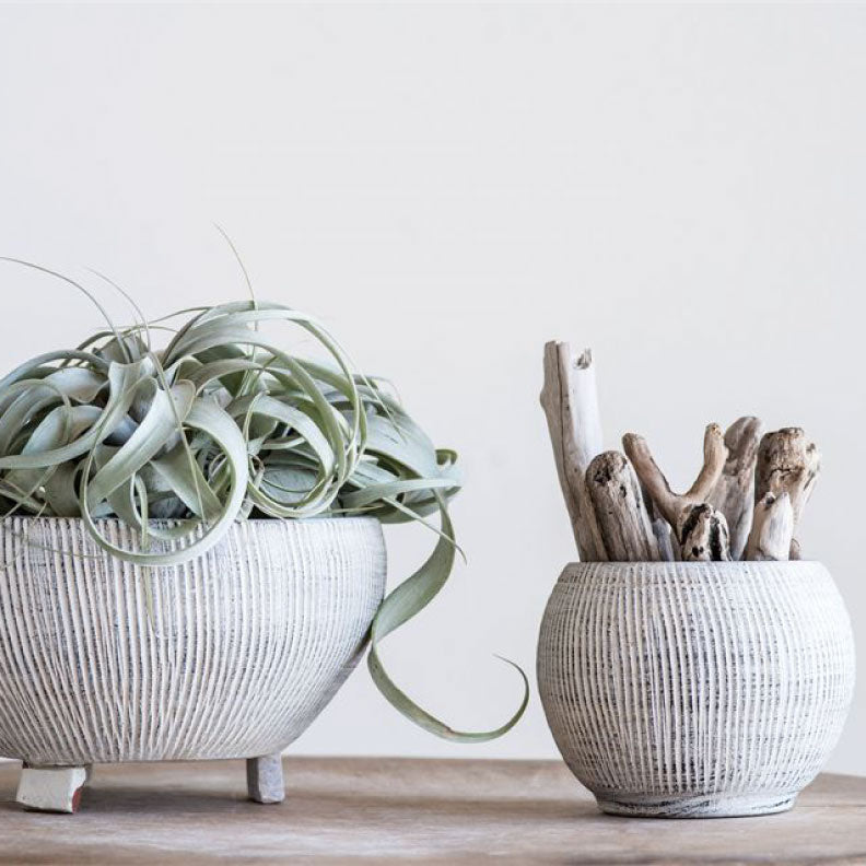 CREAM TEXTURED PLANTER - Bungalow 56 Living