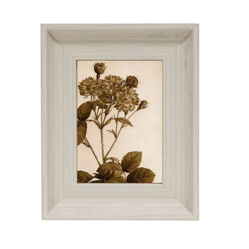 BIRCH PHOTO FRAME - Bungalow 56