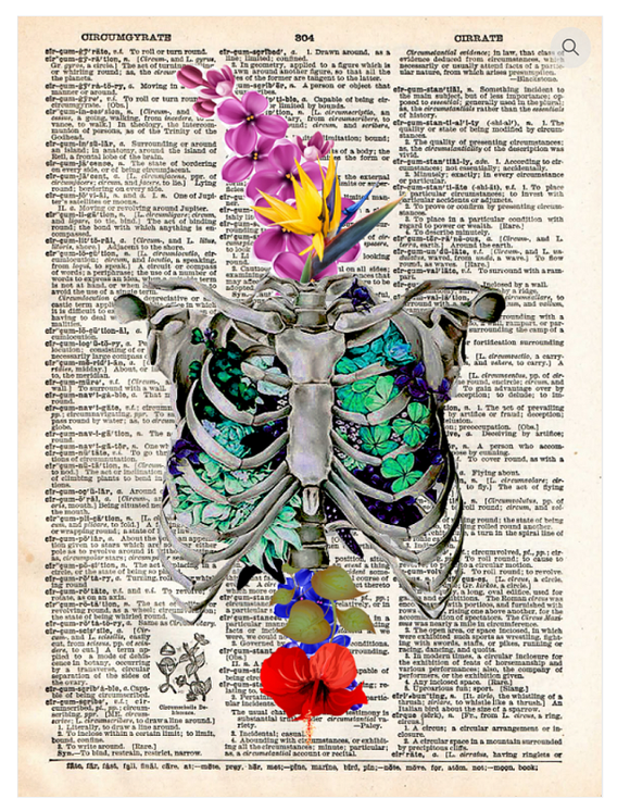 Art N Wordz Rib Cage with Flowers Dictionary Page Pop Art Wall or Desk Art Print Poster