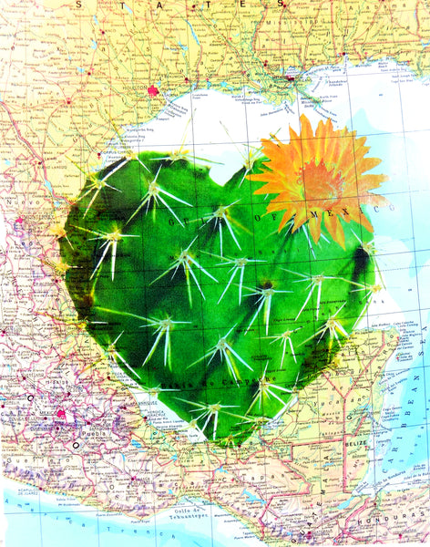 Art N Wordz Cactus Heart Original Atlas Sheet Pop Art Wall or Desk Art Print Poster