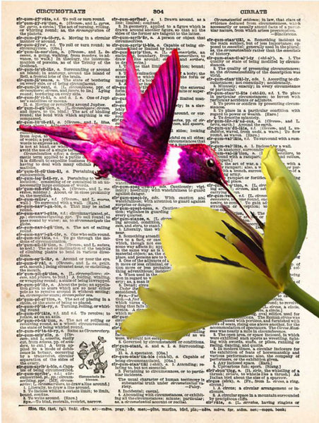 Art N Wordz Hummingbird Dictionary Sheet Original Pop Art Wall or Desk Art Print Poster