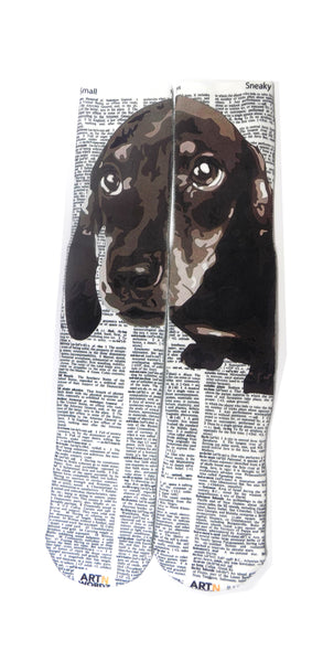 Art N Wordz Apparel Dachshund Small-Sneaky Dictionary Print Pop Art Unisex Socks