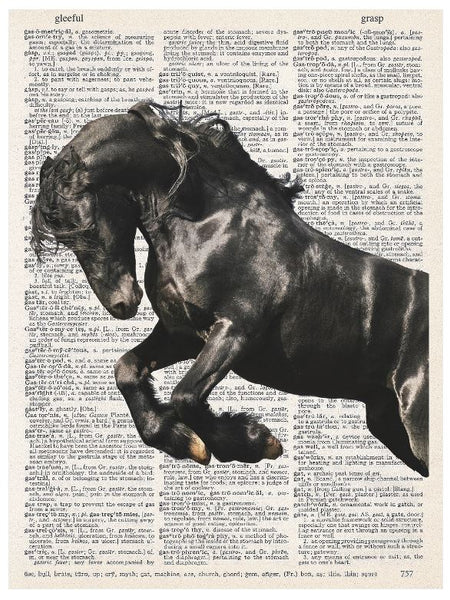 Art N Wordz Black Arabian Horse Original Dictionary Sheet Pop Art Wall or Desk Art Print Poster