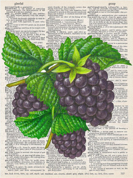 Art N Wordz Blackberries Original Dictionary Sheet Original Pop Art Wall or Desk Art Print Poster