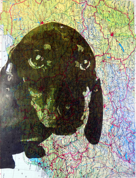 Art N Wordz Dachshund Face On Original Atlas Sheet Pop Art Wall or Desk Art Print Poster