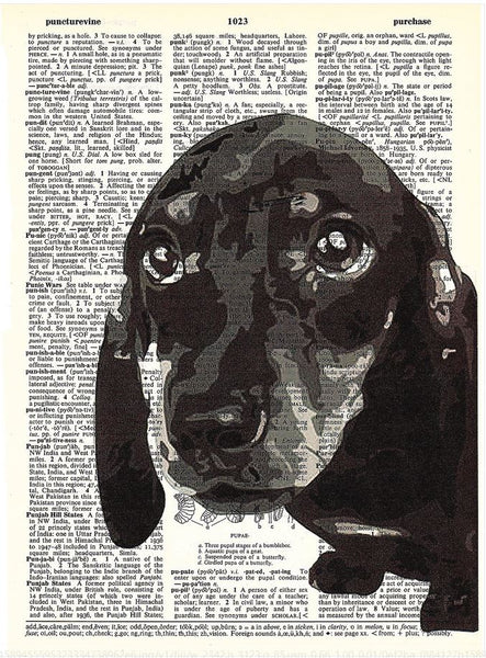 Art N Wordz Dachshund Face On Original Dictionary Sheet Pop Art Wall or Desk Art Print Poster