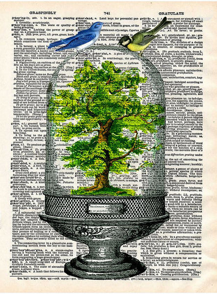 Art N Wordz Bonsai Tree Under Glass Original Dictionary Sheet Pop Art Wall or Desk Art Print Poster