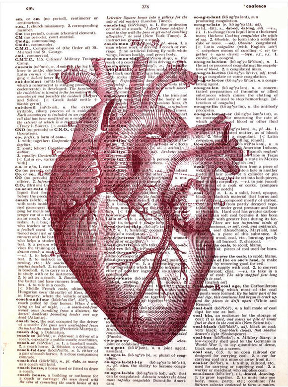 Art N Wordz Red Anatomical Heart Original Dictionary Sheet Pop Art Wall or Desk Art Print Poster