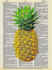 Art N Wordz Yellow Pineapple Original Dictionary Sheet Pop Art Wall or Desk Art Print Poster
