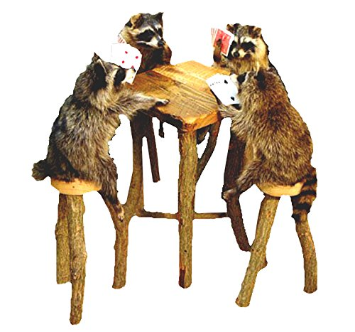 Raccoons Playing Poker Table Professional Taxidermy Mounted Animal Statue Home or Office Gift