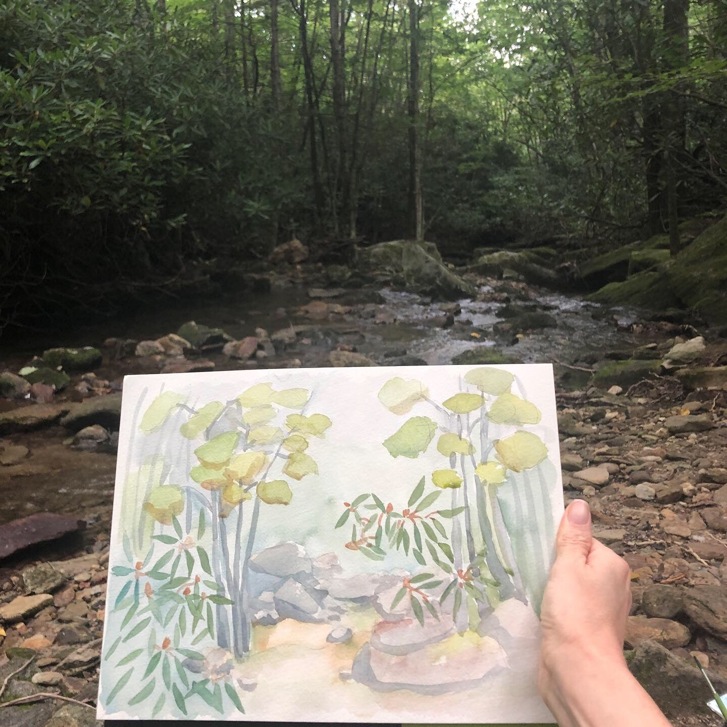 Wilson Creek Watercolor
