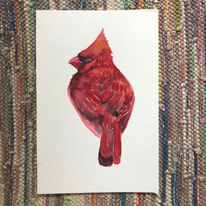 Red cardinal watercolor print  bird painting, by kat ryalls 2018
