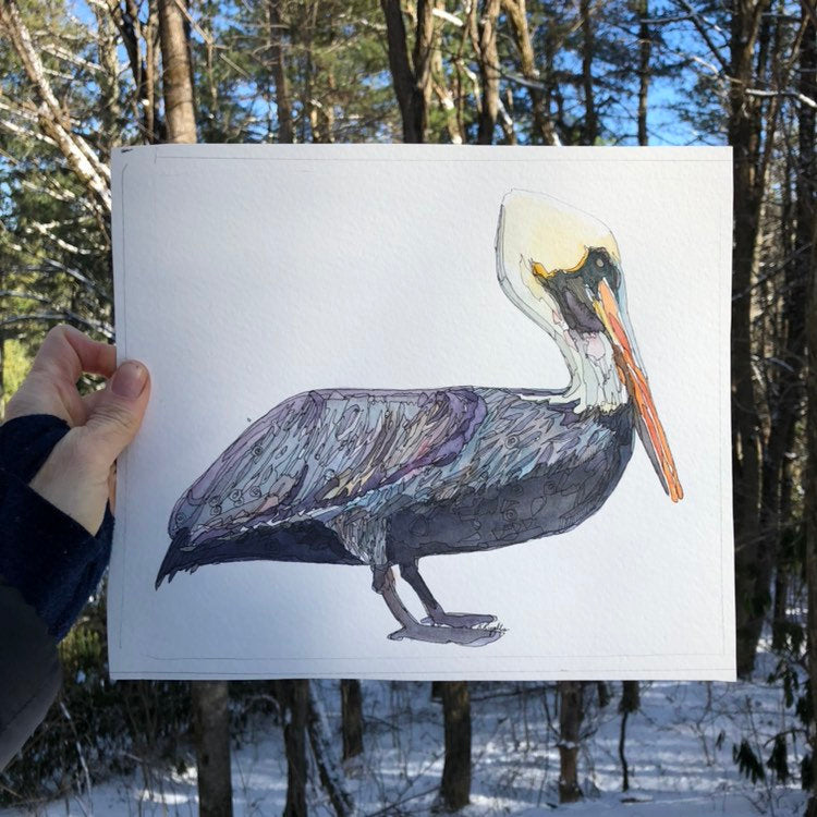 pelican watercolor giclée print on archival fine art paper signed