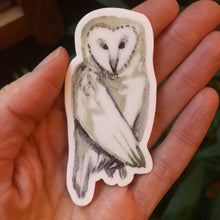 "Load image into Gallery viewer, Owl Vinyl Sticker 3"" by Kat Ryalls ink decal watercolor animal sticker"