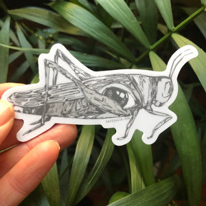 Grasshopper Vinyl Sticker by Kat Ryalls ink decal bug insect travel decal