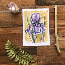 Load image into Gallery viewer, Iris Flower watercolor fine art print Kat Ryalls | floral art | home decor | wildflower painting