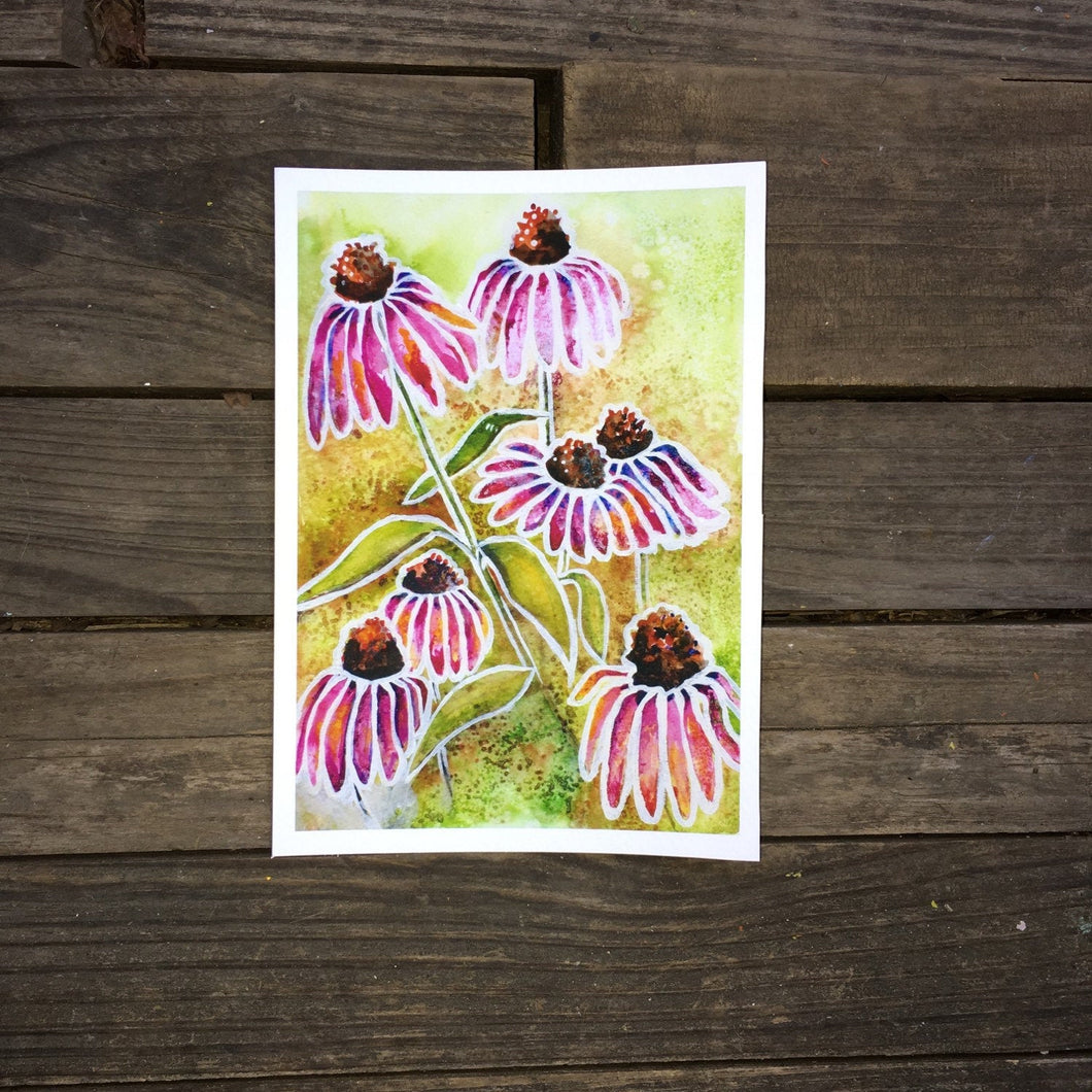 Echinacea flower watercolor  art print botanical art  Kat Ryalls