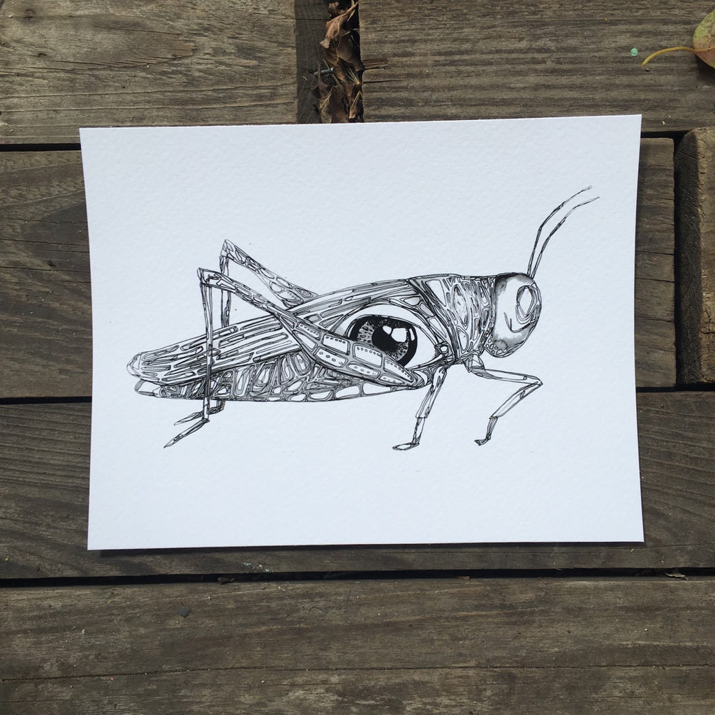 "Grasshopper eye watercolor 5x7"" fine art print kat ryalls 2015"
