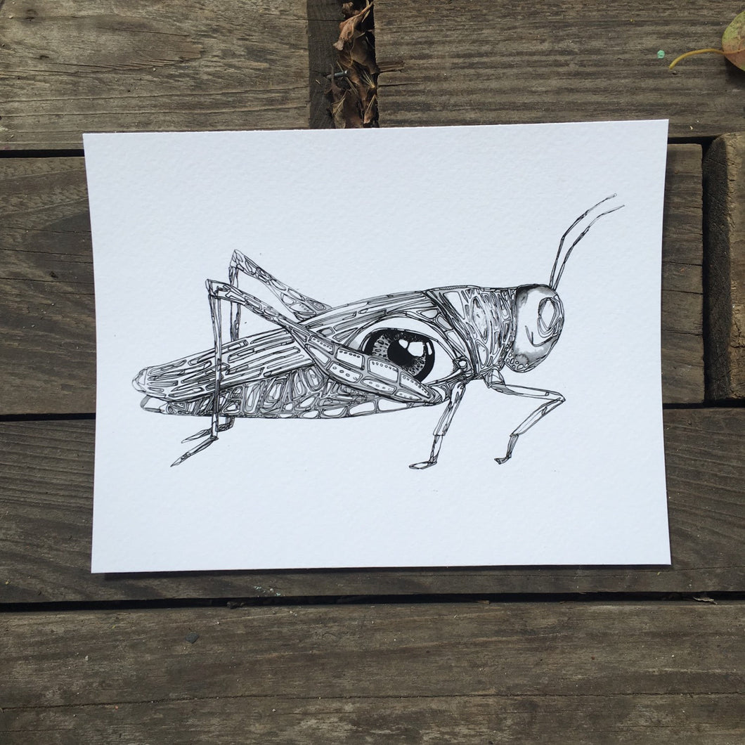 Grasshopper eye watercolor 5x7
