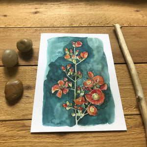 Desert Globemallow watercolor print