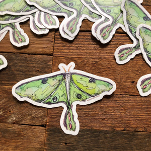 "Luna Moth 3"" vinyl decal"